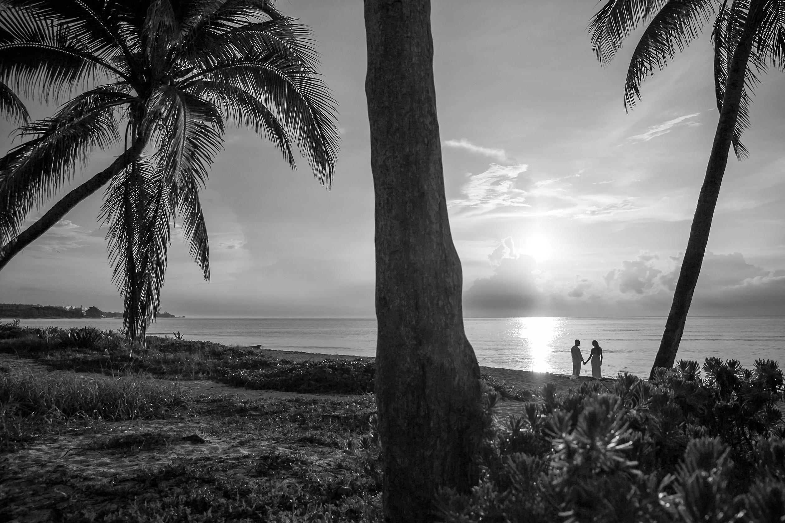 black and white of the couple holding hands over looking the ocean