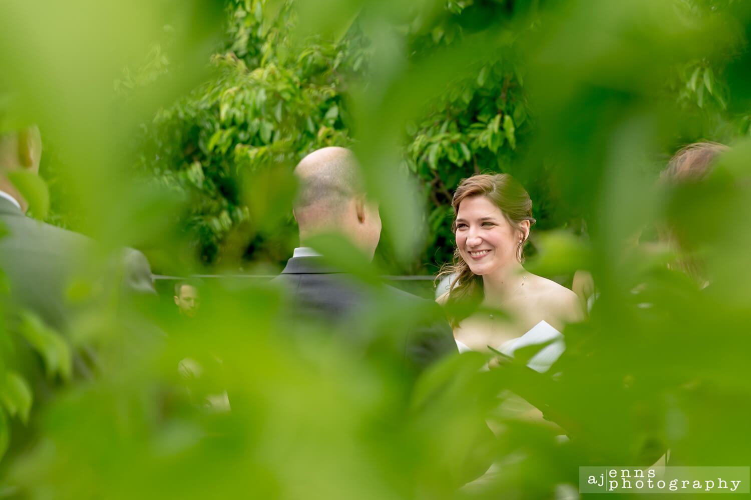Peaking at the bride from behind a hole in a near by tree