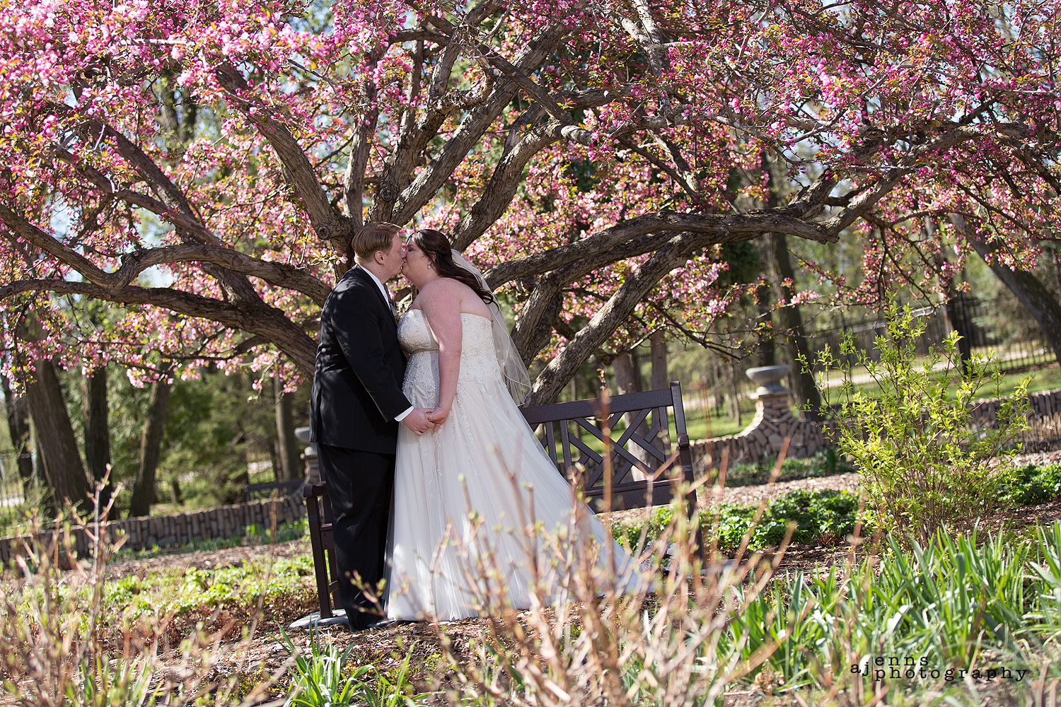 Kissing under the amazing pink tree in the English Gardens